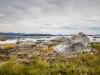 am Mono Lake